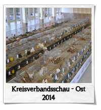 kvschau2014