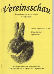 Deckblatt Vereinsschau 2013 001